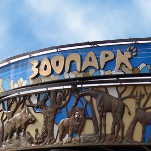 Зоопарки Ленинского